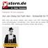 2013-11-23_Stern.de_THUMB