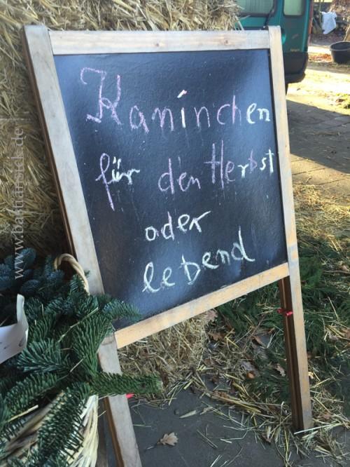 Kaninchen-für-den-Herbst-oder-lebend-©-Uschi-J.-Gerdes-27404-Weertzen-1.2.2016_WZ_iUuEX5zh_f