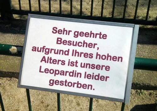 Aufgrund Ihres hohen Alters starb Leopardin_beschnitten_qJxuyi31_f