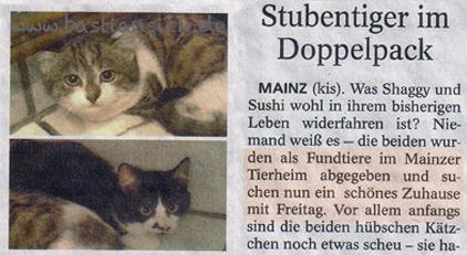 Schönes Zuhause mit Freitag (Mainzer Allgemeine Zeitung 23.01.2016) Patricia Lösch (quer)_WZ